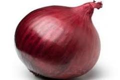 cebula czerwona 1