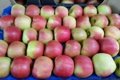 Produkt - jabłko gotowe na wytłoczce