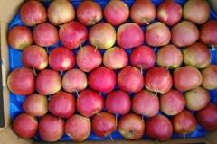 produkt - jabłko na wytłoczce 2
