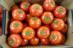 pomido BB - 2